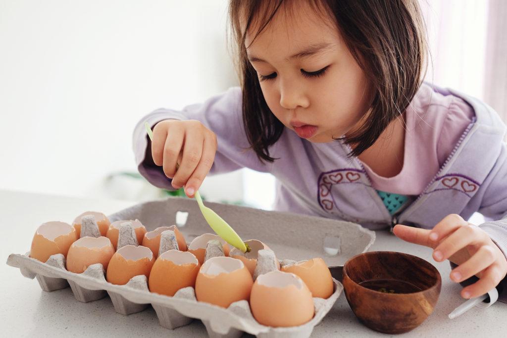 Child planting seeds in eggshells