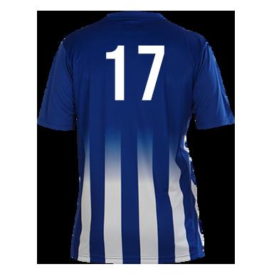 Number 17